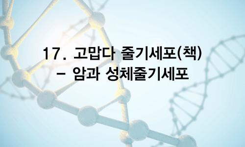 17. 고맙다 줄기세포(책) – 암과 성체줄기세포