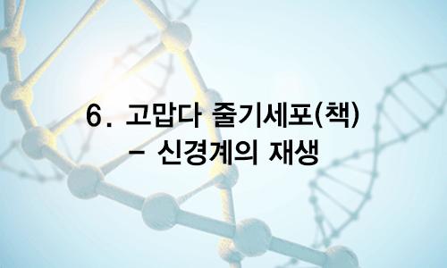 06. 고맙다 줄기세포 (책) – 신경계의 재생