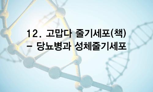 12. 고맙다 줄기세포(책) – 당뇨병과 성체줄기세포