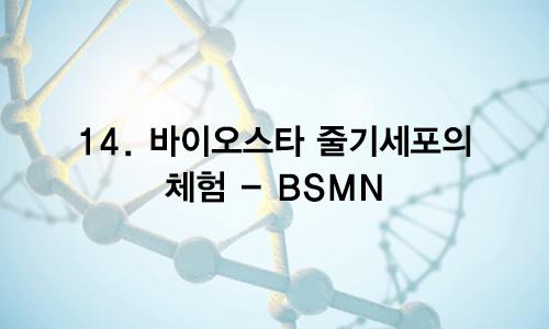 14. 바이오스타 줄기세포의 체험 – BSMN
